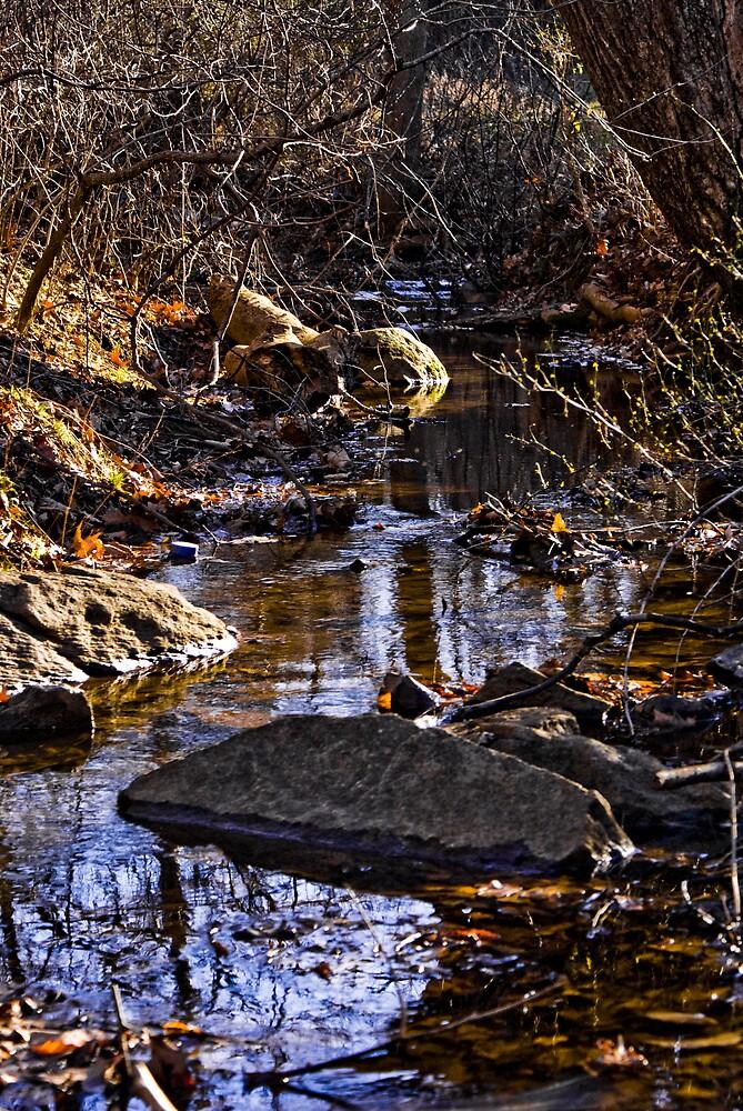 My Creek by Rod  Adams