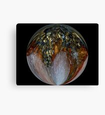Global Warming Canvas Print