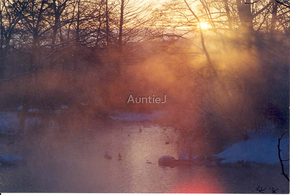 Bitter Sunrise by AuntieJ