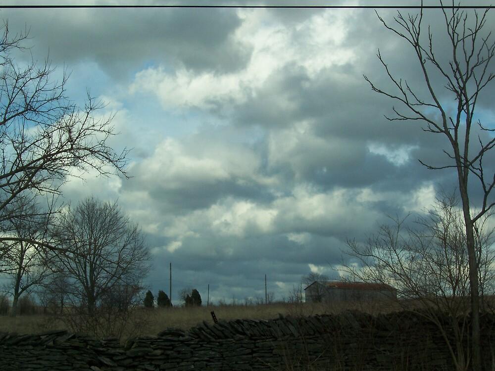 Stormy Day by Rebecca Ogden