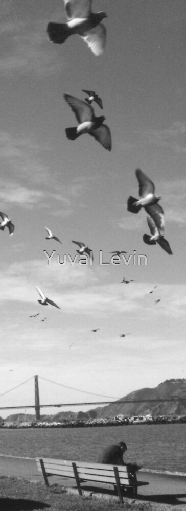 Flying Thoughts by Yuval Levin