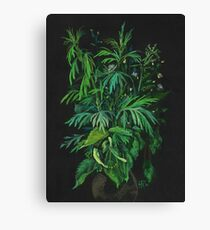 """Green & Black"", summer greenery, floral art, pastel drawing Canvas Print"