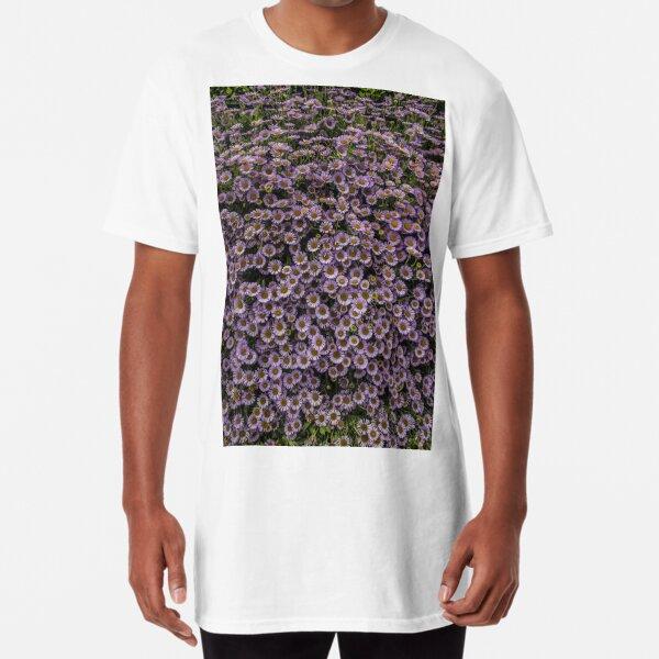 Seaside Daisy Long T-Shirt
