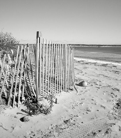 black and white...beach fence by mcht