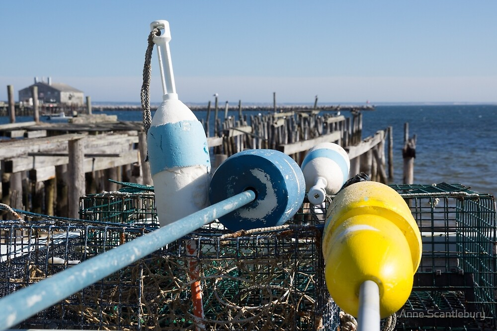 buoys and lobster pots by Anne Scantlebury