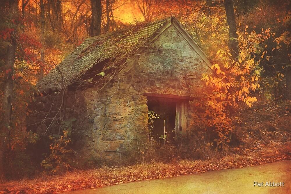 Autumn Mist On The Old Hoffman Road by Pat Abbott