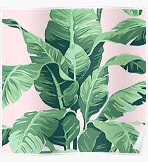 Póster Beverly Hills hoja de palma plátano rosa Print