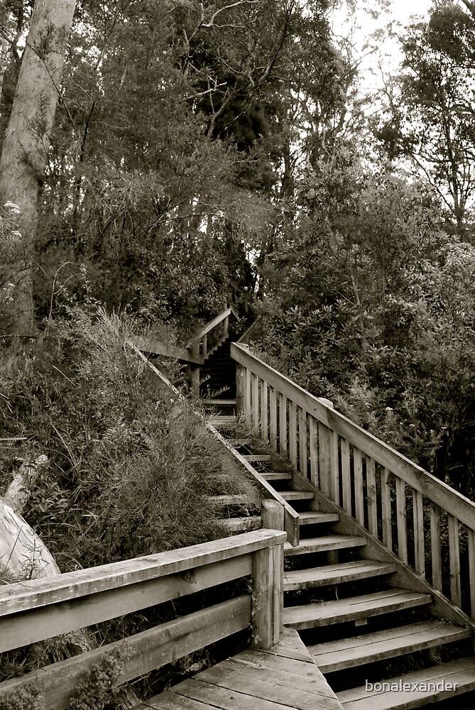 Stairway to ... by bonalexander