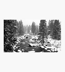 Blanket of snow Photographic Print