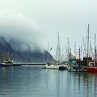 Houtbay Harbor by CrismanArt
