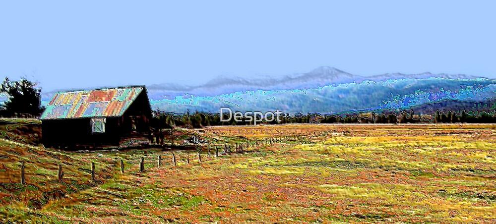 Cascade Idaho Barn by Despot