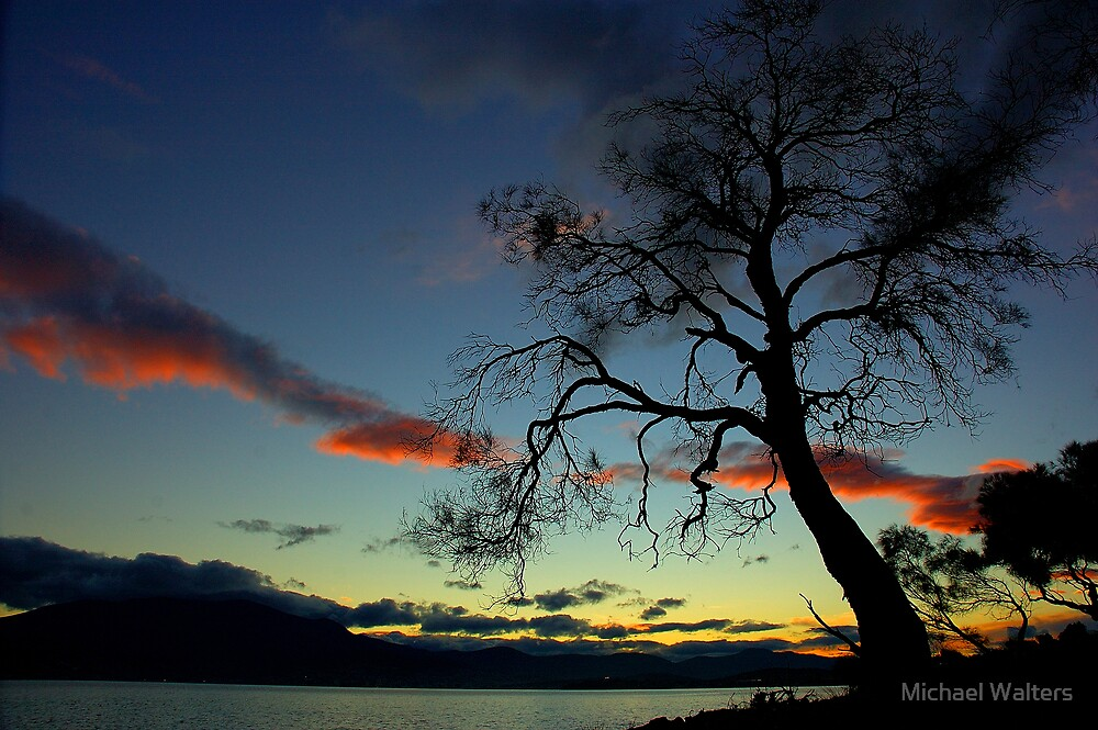 Sunset Tree over river by Michael Walters