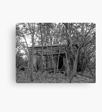 Back to the Woods Canvas Print