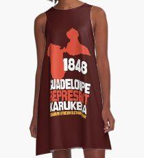Guadeloupe 1848 A-Line Dress