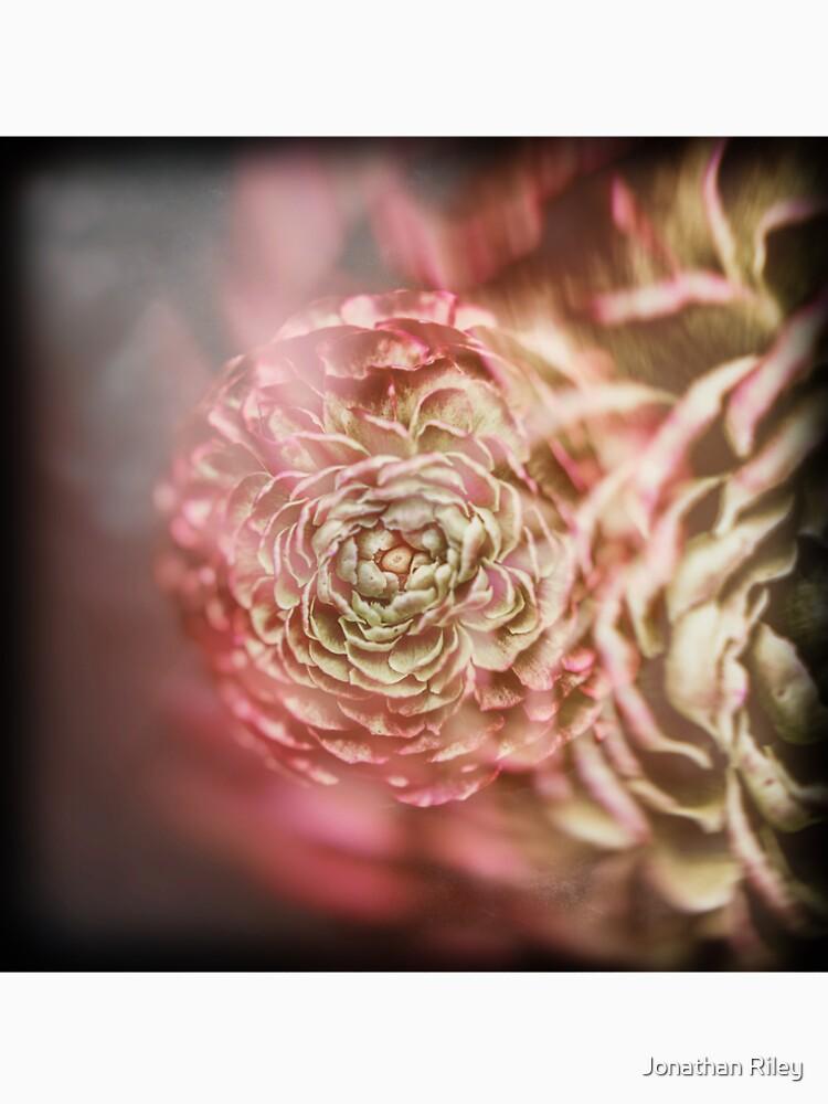 Flores de bellas artes de thetshirtstore