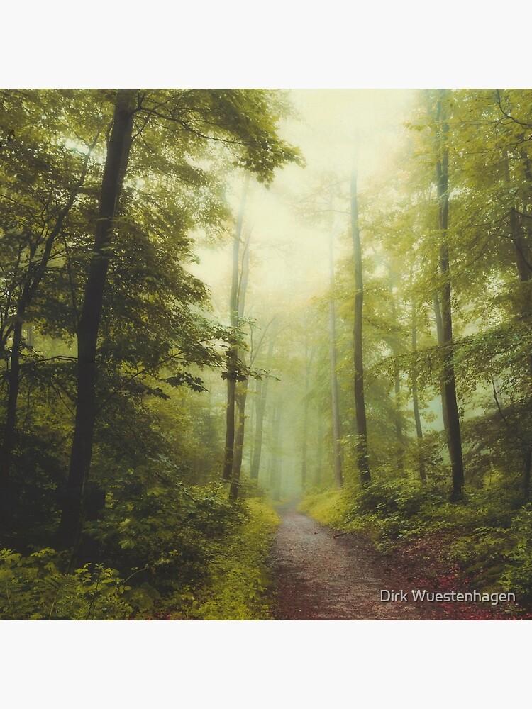 Long Forest Walk by DyrkWyst