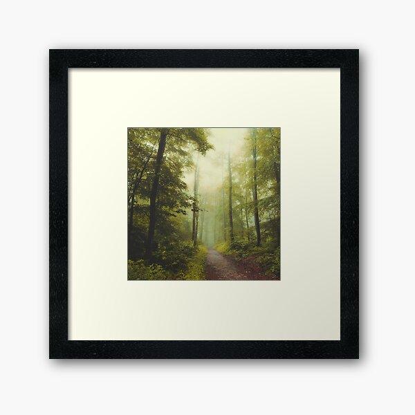 Long Forest Walk Framed Art Print