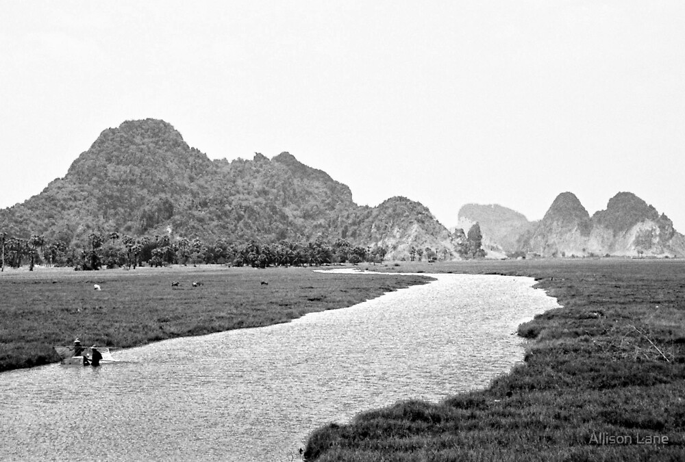 Cambodia by Allison Lane