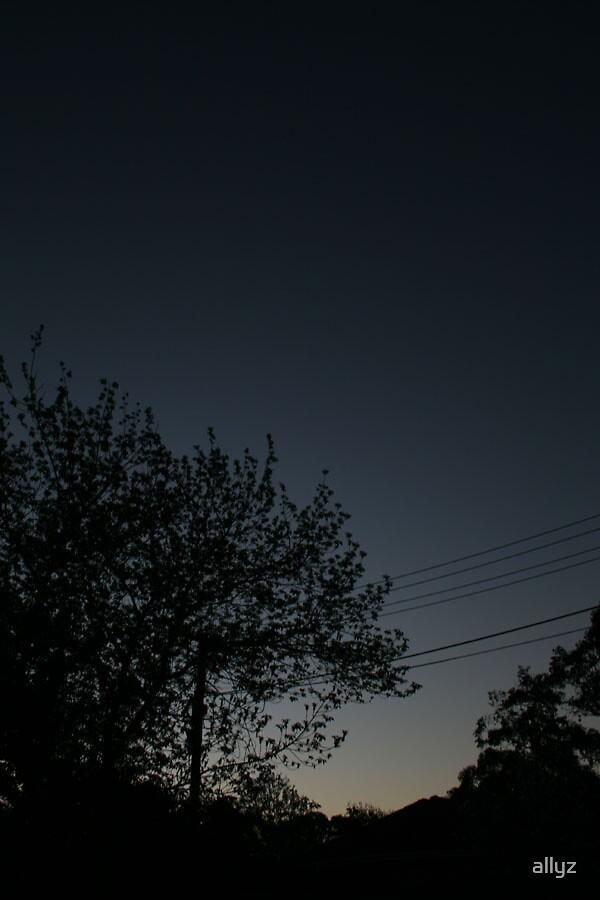 Silhouette by allyz