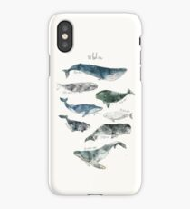 Whales iPhone Case/Skin