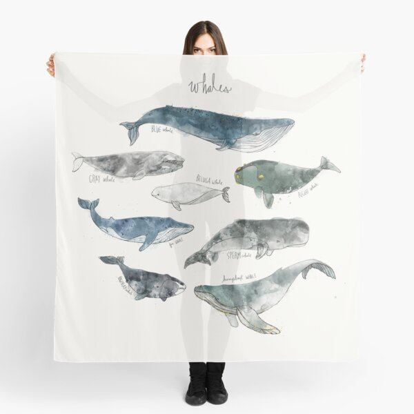 Whales Scarf