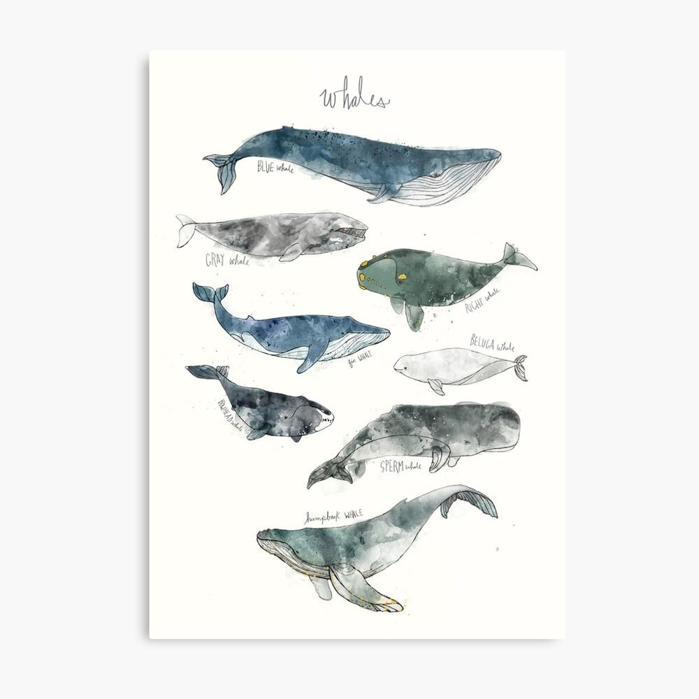 Wale Metallbild