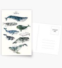 Wale Postkarten
