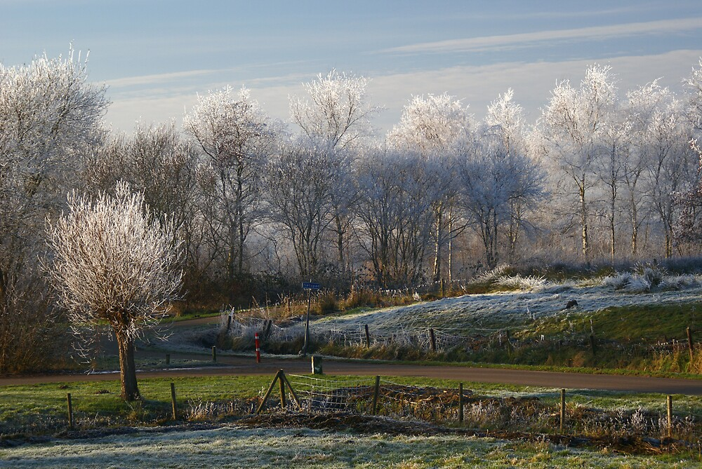 Frosty by JackPloeg