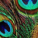 «Plumas de pavo real. Fotografía coloreada» de La Chic