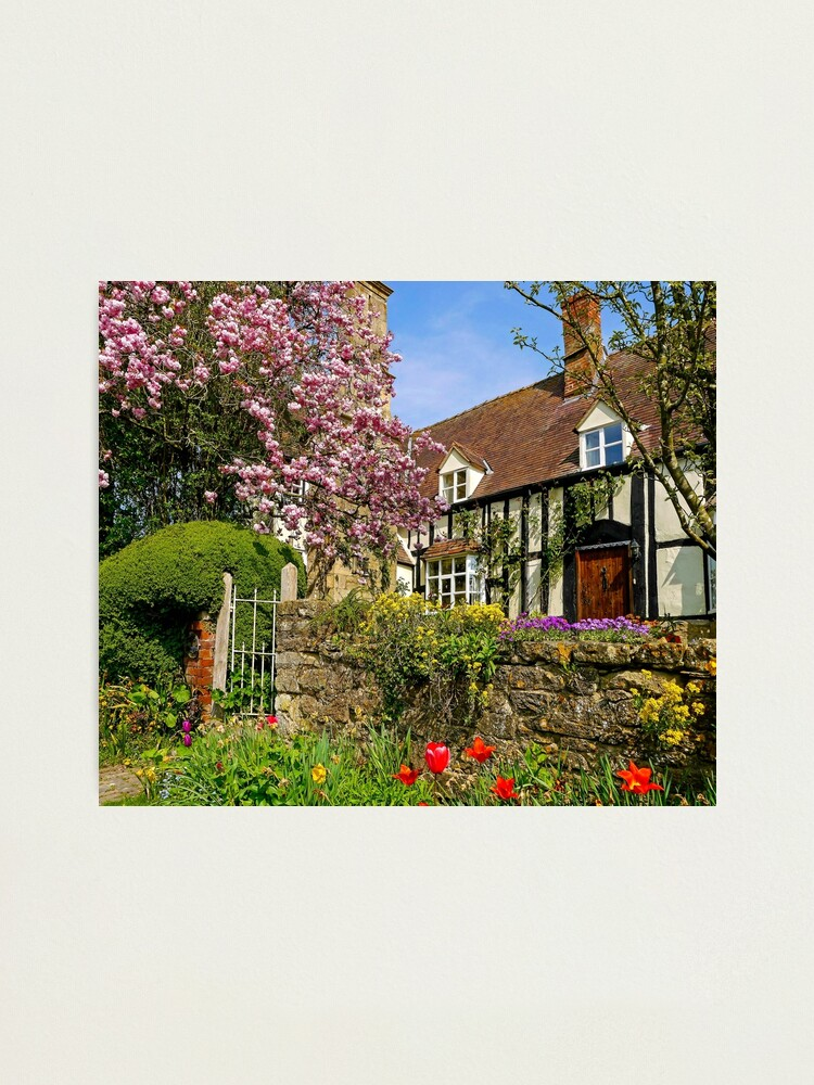 Alternate view of Colourful Spring Photographic Print