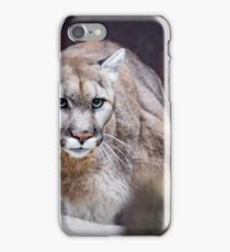 All in the Eyes iPhone Case/Skin