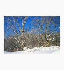 Blue Sky Winter Scene Photographic Print