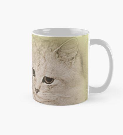 Erinnerungen an meine Kitty Tasse