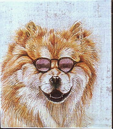 Chow Chow by Anartist
