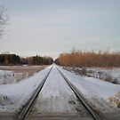 Looking Down The Snowy Railroad Tracks by 1greenthumb
