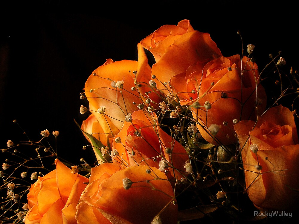 The Broken Rose by RockyWalley