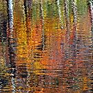 Autumn Reflections by Terri~Lynn Bealle