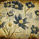 Blue Daisies by Lois  Bryan