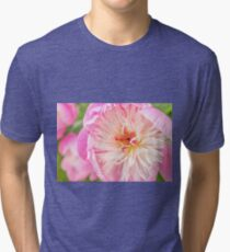 Bowl of Beauty Tri-blend T-Shirt