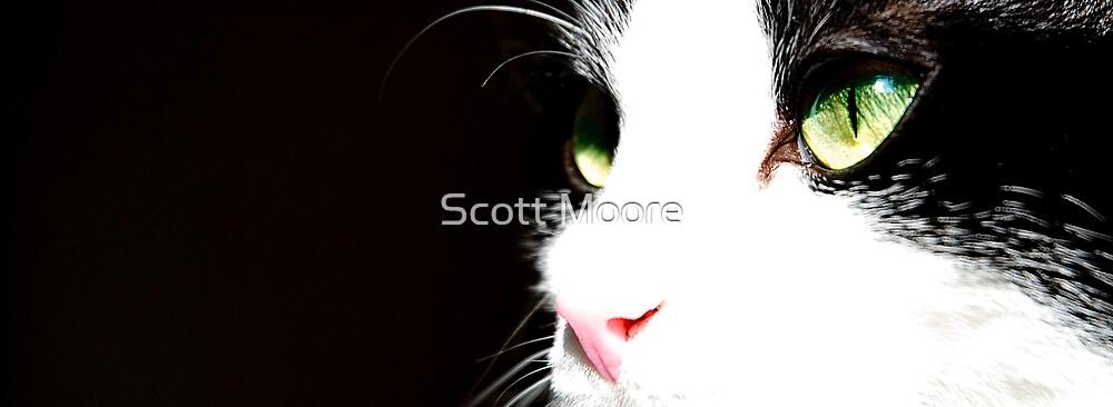 Wee George by Scott Moore
