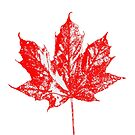Celebrate Canada 150 by hummingbirds