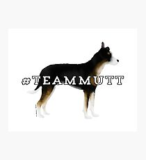 Team Mutt: Tricolor Photographic Print