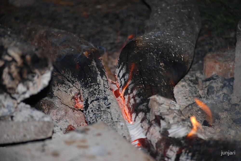 Camp Fire by junjari