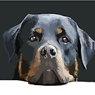 Rottweiler Portrait Vector by taiche