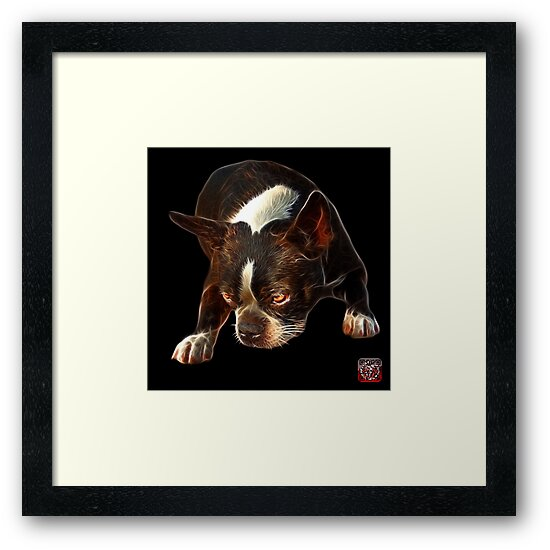 Boston Terrier Dog Art - 8384  by Rateitart