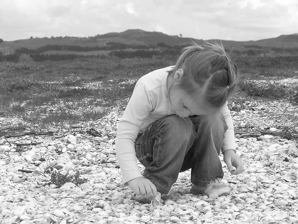 Finding the perfect sea shell by ajyenney