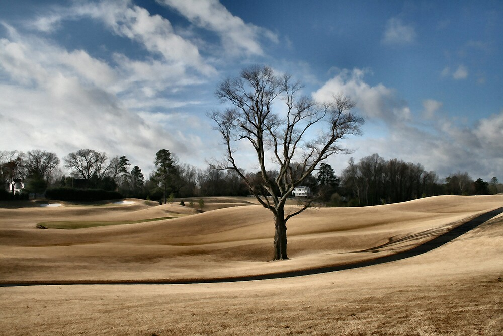 Virginia Country Club by mmrich