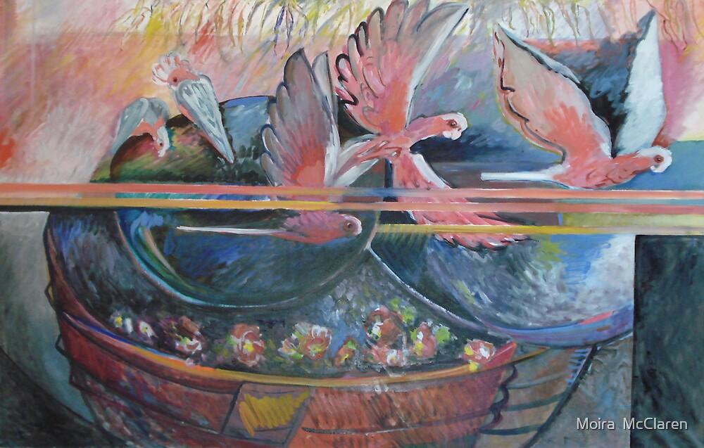 Galahs over the Water Bath  by Moira  McClaren