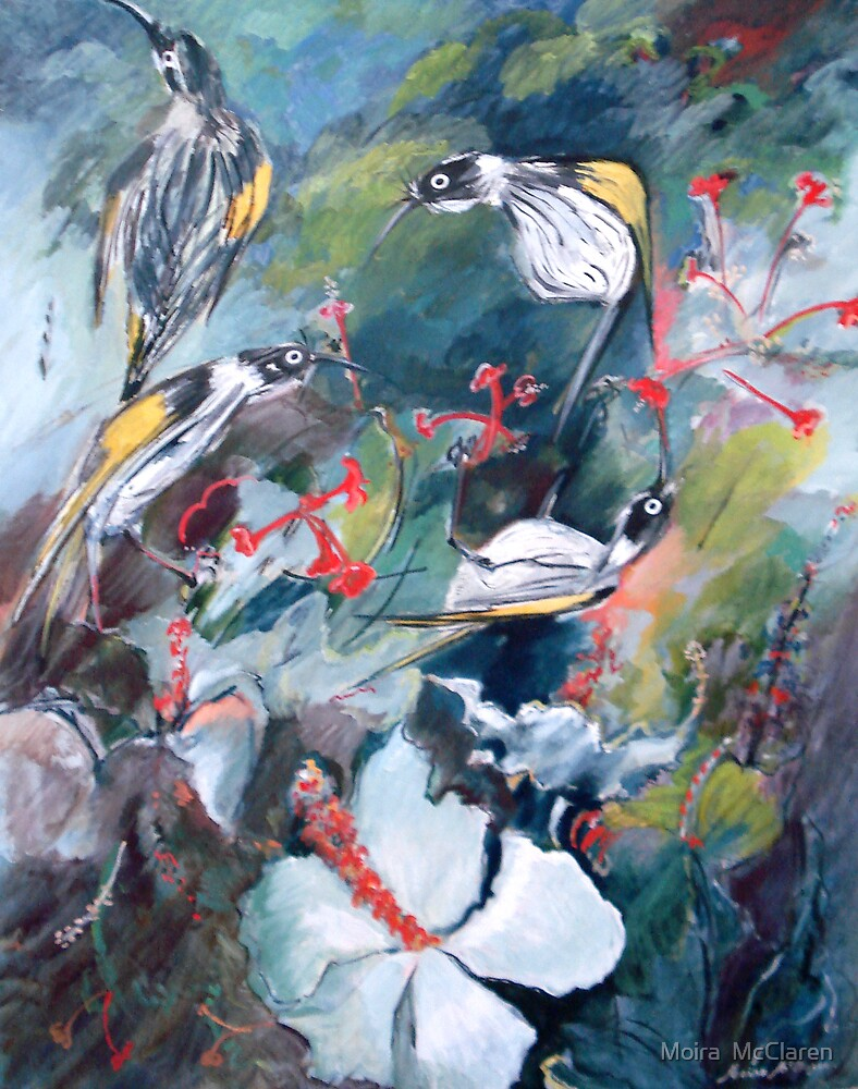 New Holland Honey Eaters with Hibiscus by Moira  McClaren