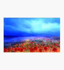 Poppies in the mist  Photographic Print